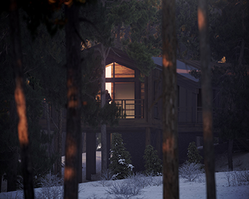 3D render of a cabin architecture project by night in the forest